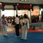 Kejuaraan Taelwondo